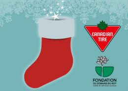 Campagne Canadian Tire Roberval 2017